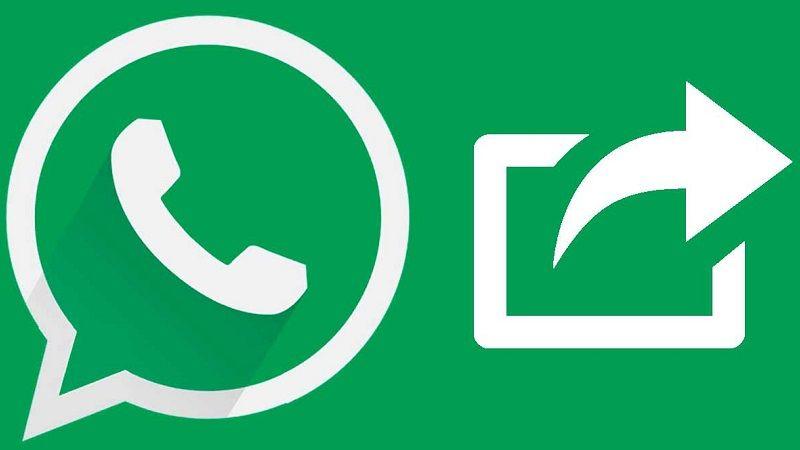 WhatsApp reenvío de mensajes